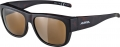 ALPINA Sonnenbrille Overview II P